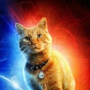 captain-marvel-cat-poster